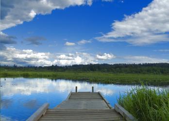 Burnaby Lake