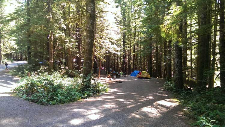 Alice Lake Camp