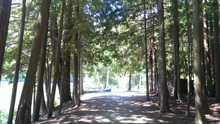 Around Alice Lake